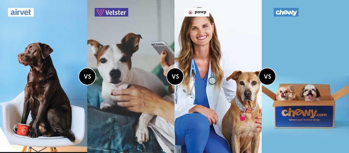 Revie-Airvet-Pet-Telemedicine